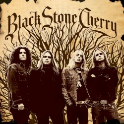 Black Stone Cherry - When the Weight Comes Down